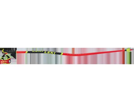 Léki WCR GS 3D 2021