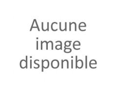 Guidetti 2 brins Marche Nordique 2020